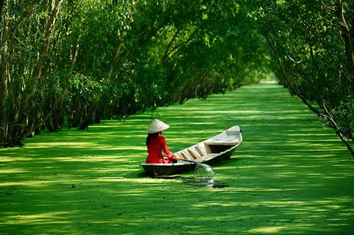 Du lịch Xuyên Việt Bắc Trung Nam 22 ngày